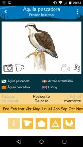 Aves de España app