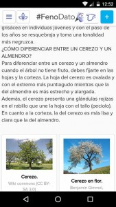 FenoDato app