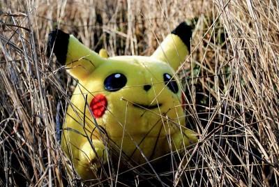Conocer el medioambiente con Pokemon Go
