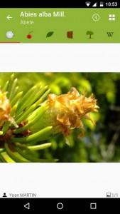 PlantNet app