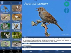 Canto Aves ID app
