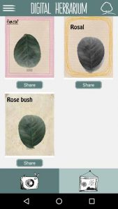An app to create herbarium sheets