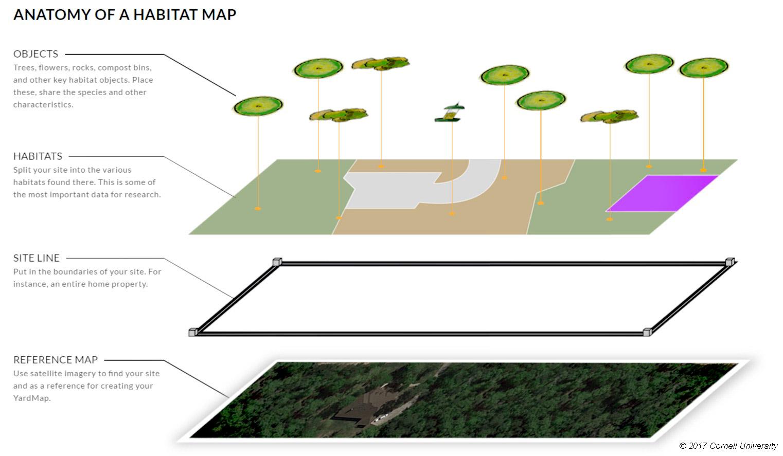 Habitat Network, clases de habitats naturales
