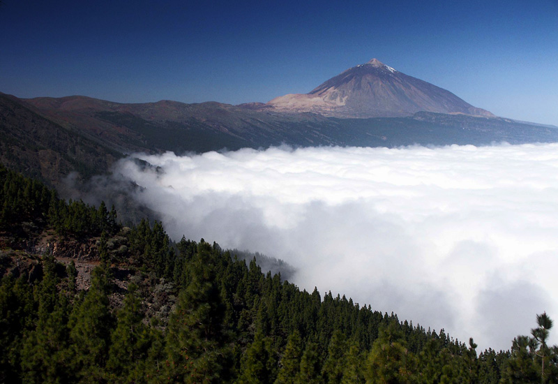 New app with information on national parks in Spain that includes areas such as the Teide National Park