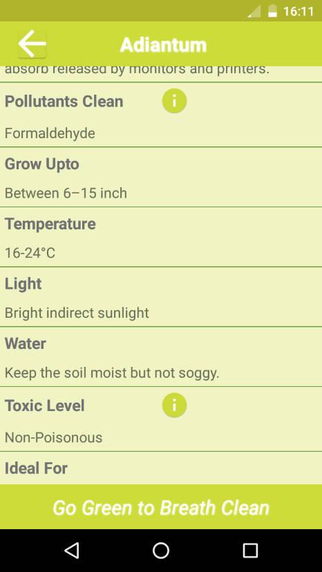Greenapps web c mo hacer frente a la contaminaci n del - Plantas de interior purificadoras del aire del hogar ...